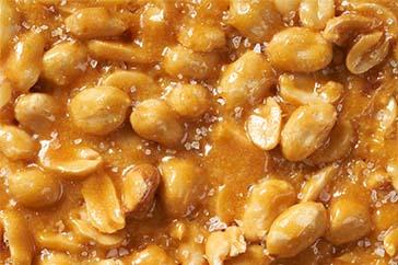Brittles - Bulk - sea-salt-peanut